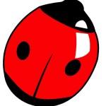 Pestalozzi Ladybird Logo